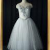 バレエの衣装「チュチュ」衣装のレンタルは可能なの?※画像あり