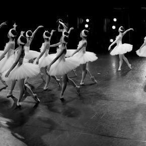 コール・ド・バレエ(群舞)の魅力|NOAバレエスクール